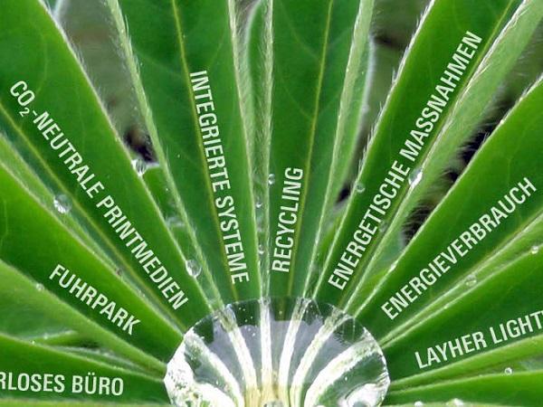 Trajnost pri Layherju – zavedanje potrebe po ohranjanju virov